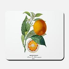 Histoire naturelle des orangers Tab 13 Mousepad
