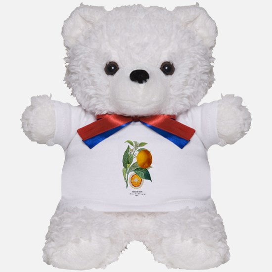 Histoire naturelle des orangers Tab 13 Teddy Bear