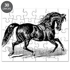 Shiny Black Stallion Horse Puzzle