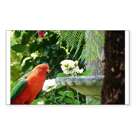 King Parrot Sticker (Rectangle)