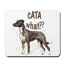 CATA WHAT Mousepad