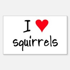 I LOVE Squirrels Decal