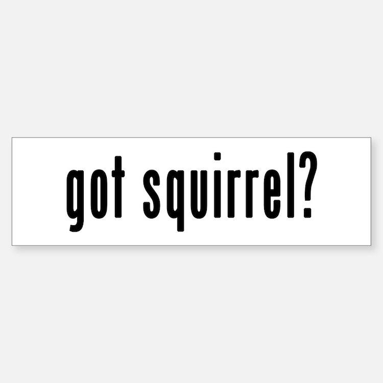 GOT SQUIRREL Bumper Bumper Sticker
