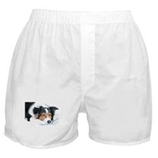 Border Collie Mattie Boxer Shorts