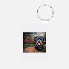 """Why God Made Dogs"" Rottweiler Keychains"