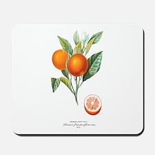 Histoire naturelle des orangers Tab 10 Mousepad