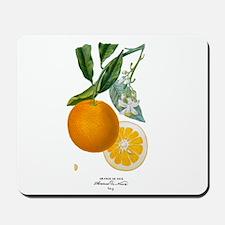 Histoire naturelle des orangers Tab 9 Mousepad