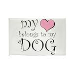 Heart Belongs to Dog Rectangle Magnet (100 pack)