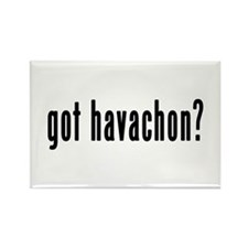 GOT HAVACHON Rectangle Magnet