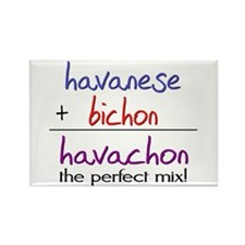 Havachon PERFECT MIX Rectangle Magnet