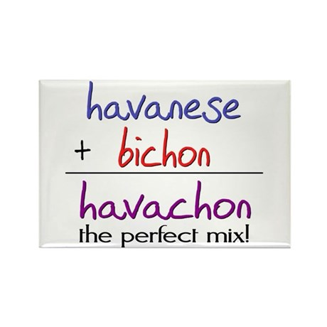 Havachon PERFECT MIX Rectangle Magnet