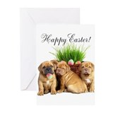 Easter puppy Greeting Cards (20 Pack)