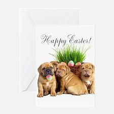 Easter Dogue de Bordeaux Greeting Card