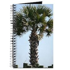 South Carolina Palm - Journal