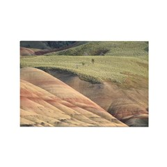 Painted Hills Prairie Rectangle Magnet (100 pack)