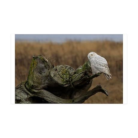 Snowy Owl perching 38.5 x 24.5 Wall Peel