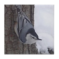 Nuthatch Tile Coaster