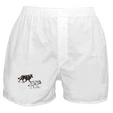 Cute Herding Boxer Shorts
