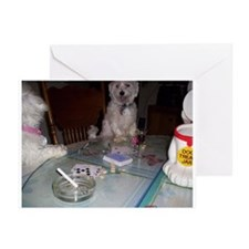 dogs at play Greeting Cards (Pk of 10)