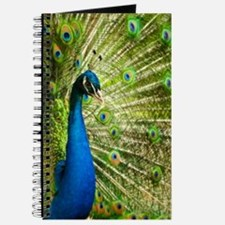 Cute Peacock Journal