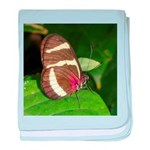 Butterfly pic baby blanket