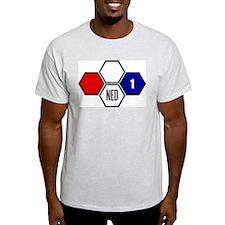 World Cup Stars Van Der Sar Ash Grey T-Shirt