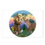 StFrancis-Pony Postcards (Package of 8)