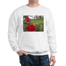 Red Roses In Park Sweatshirt