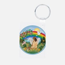 Rainbow - Shar Pei 2 Keychains
