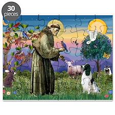St Francis /English Springer Puzzle