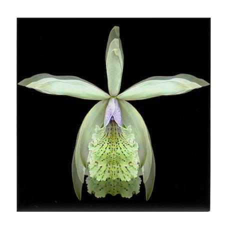 Orchid Epi Ceramic Tile Coaster