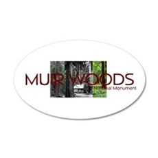 ABH Muir Woods 20x12 Oval Wall Decal