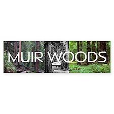ABH Muir Woods Car Sticker
