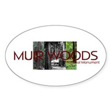 ABH Muir Woods Decal