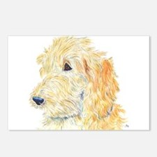 Cream Labradoodle 1 Postcards (Package of 8)