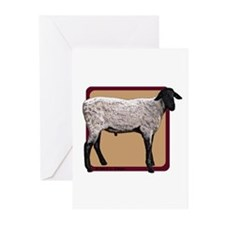 Eat Sleep Sheep Greeting Cards (Pk of 20)