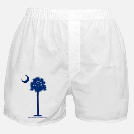 Clothing Boxer Shorts