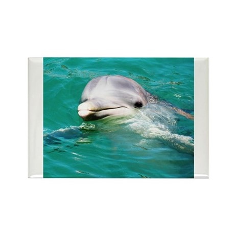 Dolphin in Caribbean Blue Wat Rectangle Magnet (10