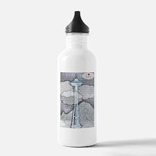 Unique Needles Water Bottle