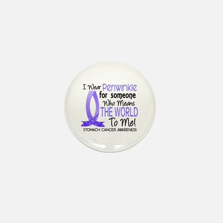 Means World To Me 1 Stomach Cancer Mini Button