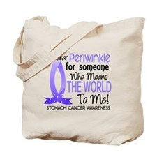Means World To Me 1 Stomach Cancer Tote Bag