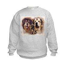 tibetan Mastiff family group Sweatshirt