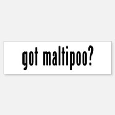 GOT MALTIPOO Bumper Bumper Sticker