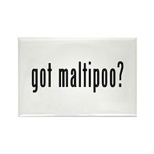 GOT MALTIPOO Rectangle Magnet