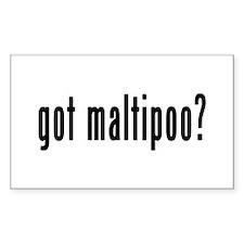 GOT MALTIPOO Decal