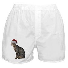Savannah Cat Christmas Boxer Shorts