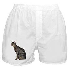 Savannah Cat Boxer Shorts
