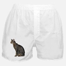 Savannah Cat Boxer Shorts