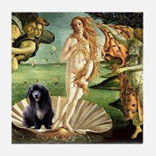 Venus and Vern Tile Coaster