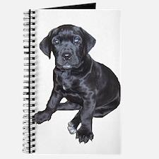Mastiff Puppy Journal